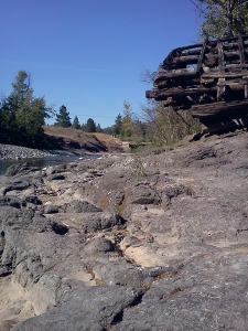 Remnants at Spius Creek
