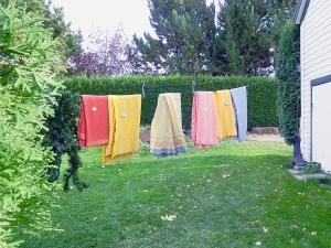 baillie house clothesline