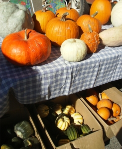pumpkins at farmers market
