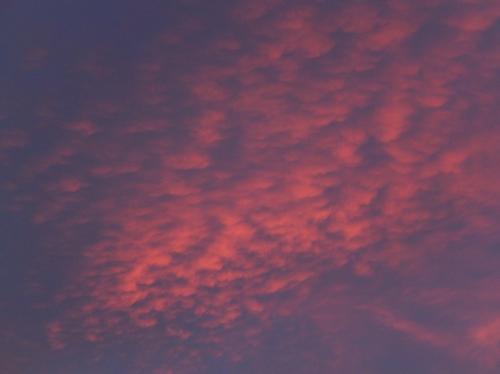 Wednesday's evening sky