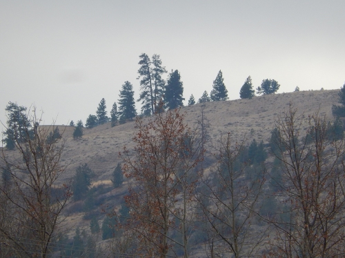 Dark skies to the south foretell snow at the Coquihalla summit, now fully engulfed in winter!
