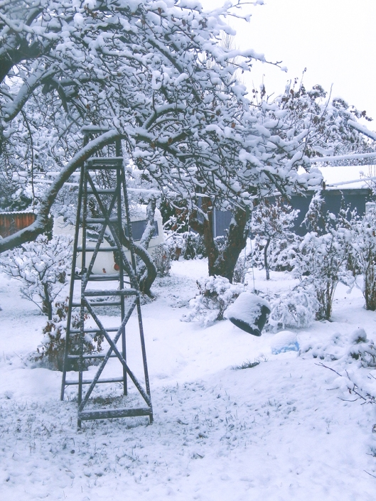 The first snow of the season won't last, with the snow level expected to rise to 1300 metres Monday night. Tuesday,they're calling for rain with a high of 10, then below freezing at night..