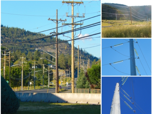 Thanks to the two major power projects (BC Hydro upgrade & Merritt 'Green' Energy, we got plenty of power poles...!